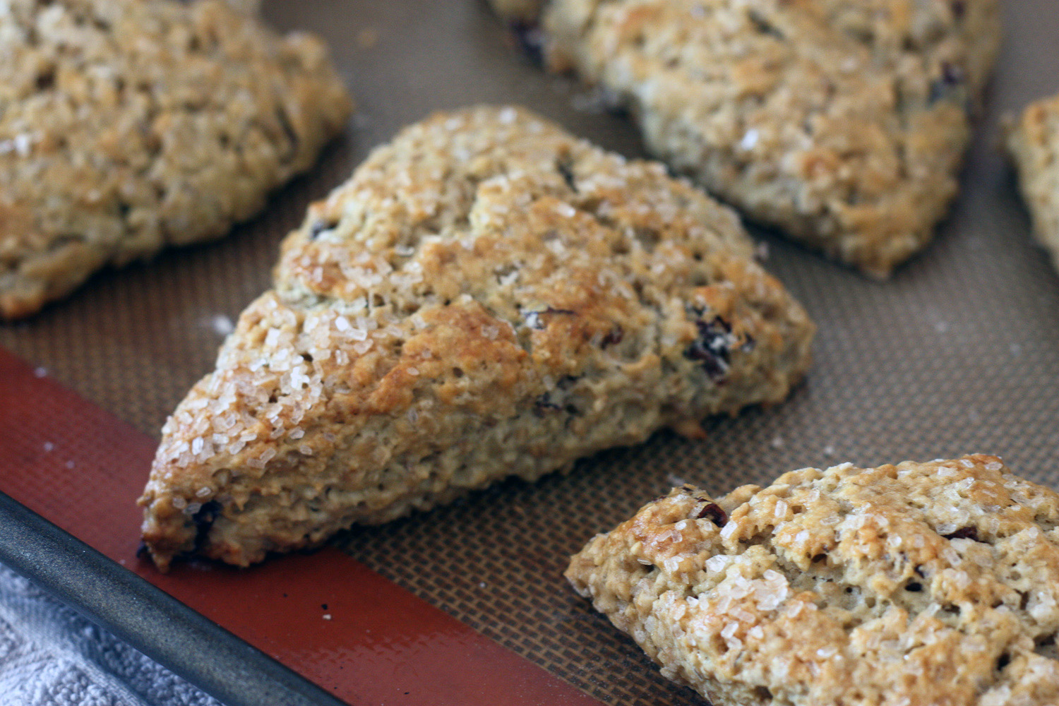 recipe steel cut oat scone 21