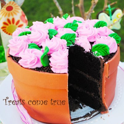 Vanilla Flower Picture on Diy  How To Make A Flower Pot Cake   Catch My Party
