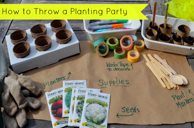 Party On A Budget A Mini Planting Party Catch My Party