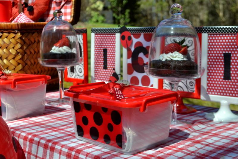 PARTY ON A BUDGET Spotty Dotty Ladybug Picnic Party Catch My Party