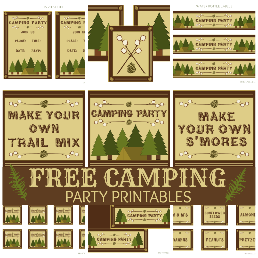 Camping Invites For Birthdays with nice invitation sample