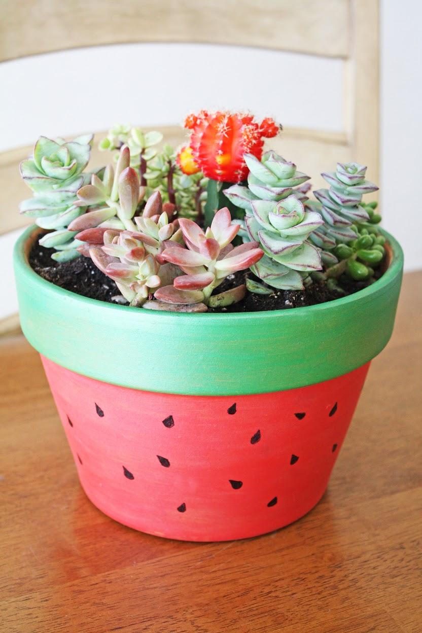 Succulent Painted Pot DIY | Catch My Party